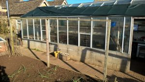 greenhouse jobs
